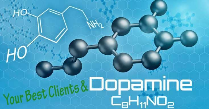Dopamine and Best Clients